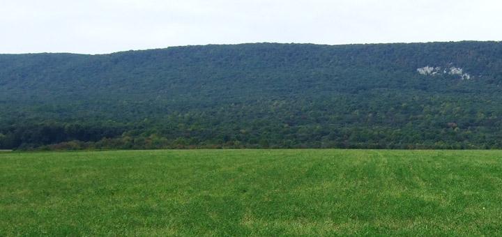 Hagenbuch Blue Mountains Pennsylvania Allemengle