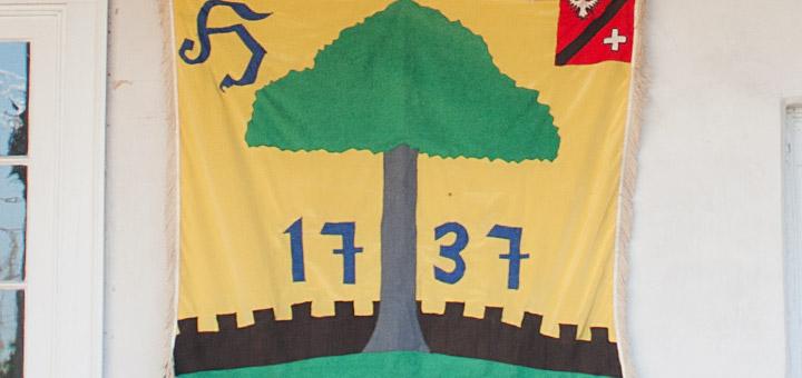 Hagenbuch Family Flag