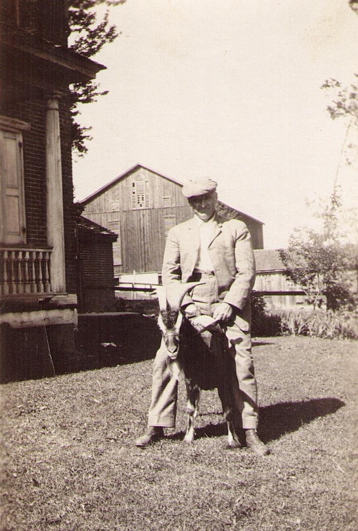 Percy Hagenbuch Riding Goat