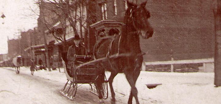 Percy Hagenbuch Sleigh & Horse
