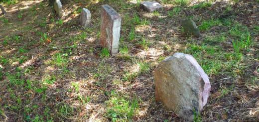 Hagenbuch Homestead Cemetery