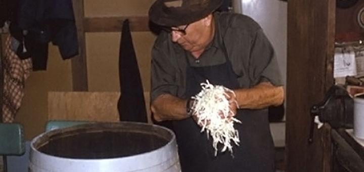 Odis Faus Sauerkraut 1979