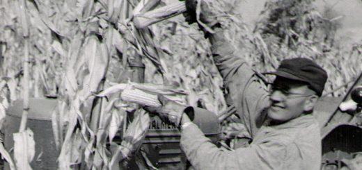 William Paul Roat Tractor 1950 Detail