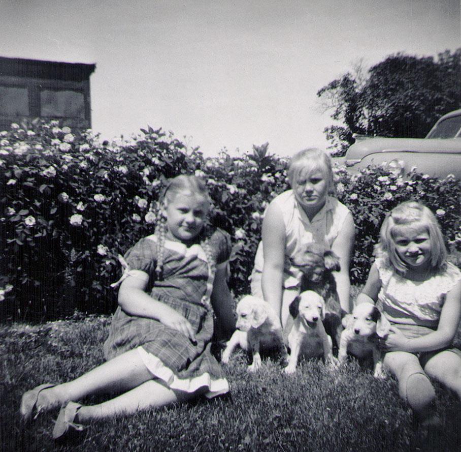 Wilma, Frances & Viola Hagenbuch