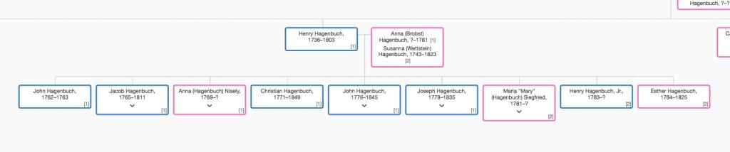 Henry Hagenbuch Family Tree