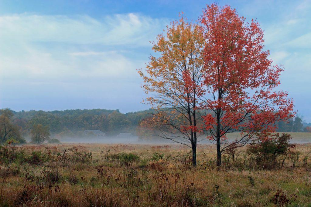 Early Fall Berks County PA