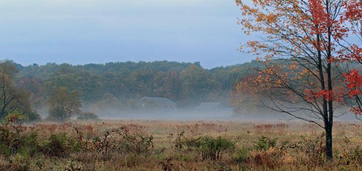 Early Fall Berks County PA Detail