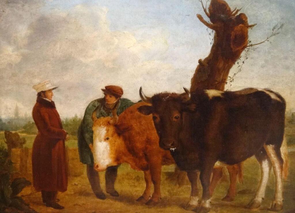 Farmer Prized Bulls