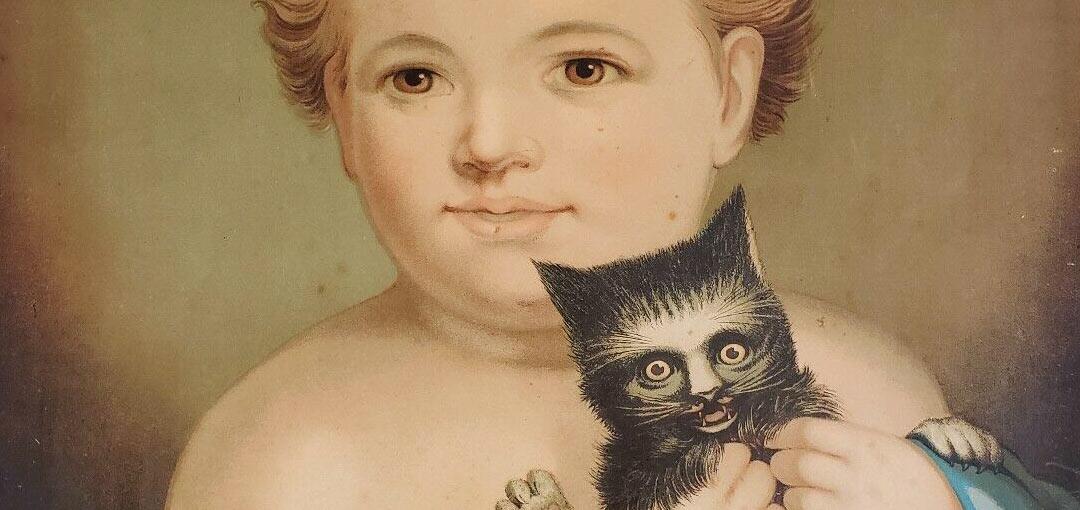 Kitty Darling Boy Detail